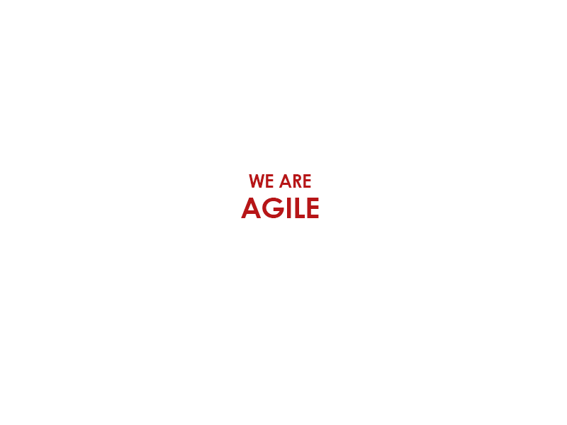Agile Analytics Consultants